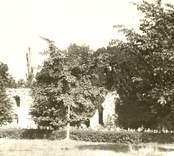 Kyrkoruinen i Västra Ed.