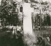 Martinuskorset i Gärdslösa.