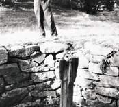 Varggropen intill Nilssons gård i Tränsjömåla år 1929.