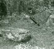Offerplats, Frejas altare, vid Skedemosse.