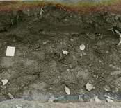 Hälleberga kyrka: Arkeologisk utgrävning efter branden 1976-10-18. Schakt för VA översiktsbild mot norr.