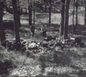 Småland Döderhult socken Mysingsö Fornlämning nummer 79 Arne Flygare och herr Ekstrand vid husgrund nummer två.  Foto: Eeva Rajala, juni 1987