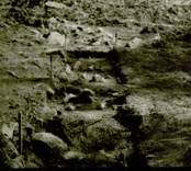 Arkeologisk undersökning  Boplats C1. Nordöstra delen av schakt (nordost-sydväst) från sydväst.