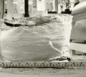 Arkeologisk undersökning 920330 - 921026  Boplats B. Anläggning 100, keramik i gipspreparat.