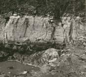 En guldring där man fann den vid utgrävningen av Skedmosse.