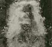Häst med stör, påträffad vid utgrävningen av Skedemosse.