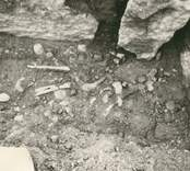 En hällkista med mänskliga kvarlevor, som påträffades vid utgrävning av Störlinge gravfält.
