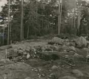 Röse, undersökt 1956 av Ekelund och KG. Petersson.  Bottnen under rösets mittparti.  Foto ATA.