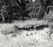 Domarring vid södra  sidan av Uknadalen.