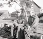 K.A. Karlsson och Lars Karlsson . Foto: 15/08 1947.