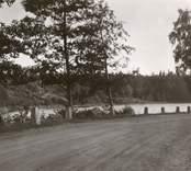 Väg vid sjö i Hjorted.