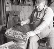 Aldor Nilsson agnar torskrev.