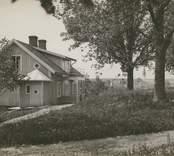 """""""Parti från Högsby gård"""", [Högsby socken]. Fotografi på gråbeige kartong"""