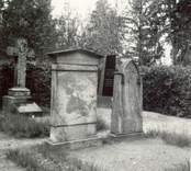 Gravstenar på kyrkogården i Blackstad socken. Rodinska graven.