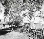 Gata mot sjöbodarna. Foto: 02/07 1952.