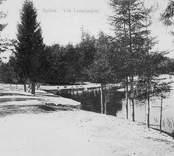 Vid Linnèasjön. Kort avstämplat Nybro 14/2 1906. Sture Ljungdahl, Nybro. Dessa bilder är tryckta i almanackor utgivna av Nybro Hembygdsförening. De är inte till salu genom KLM, men vi väljer att visa dem då vi har få bilder från det Nybro var en gång.