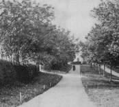 Järnvägsparken i Nybro.
