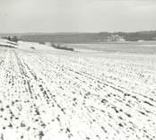 Från åsen ner mot Kuttorp.