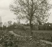 Stenmurar längs byvägen.