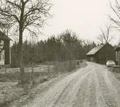 Vägen vid Regnellsgården i Bankhult.