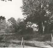 Mangårdsbyggnaden sedd från väster.