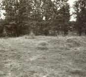 Småland Fagerhults socken Ringhultsborg  Foto: Kerstin Haglund sommaren 1979