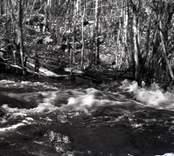 En å i Lilla Fighult.