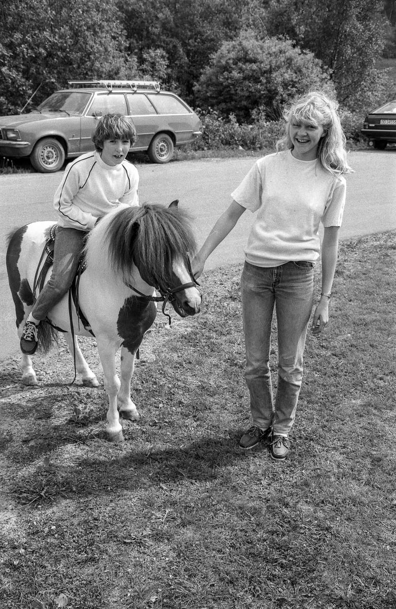 Langhusdagene 1983 (Foto/Photo)