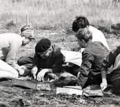 Kung Gustaf VI Adolf och kronprins Carl Gustaf vid utgrävningarna av Skedemosse.