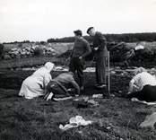 Ulf Erik Hagberg och kung Gustaf VI Adolf utgrävningarna av Skedemosse.