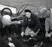 Erik Nylén, Ulf Erik Hagberg och Greta Arwidsson vid utgrävningarna av Skedemosse.