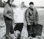 Foto från utgrävningen i Skedemosse.