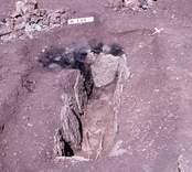 Hällkista med mänskliga kvarlevor från Sörby-Störlinge gravfält.