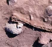 Föremål funnet vid utgrävning av hus 1 i Sörby Tall.