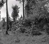 Ruin stenstuga, rester av väggar.