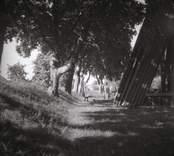 Del av kyrkogården vid klockstapeln till Kråksmåla kyrka.