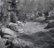 Väg kantad av stenar i Hökfors, primitiv väg skapad genom vältande av stenarna åt sidan.