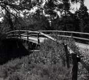 Bro över SJ sydost om Forshult i Oskarshamns kommun. Foto, från norr.