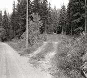 Bro över dike mellan Skälsbäck och Triabo i Högsby kommun. Foto, vägmiljö från sydost.